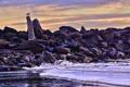 Картинка камни, небо, коряга, облака, птица, море