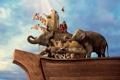 Картинка животные, небо, птицы, человек, корабль, жирафы, обезьяны