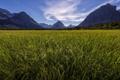 Картинка поле, небо, пейзаж, горы