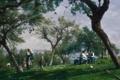 Картинка небо, трава, пейзаж, природа, дети, стол, люди