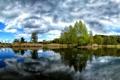 Картинка вода, природа, пейзажи, красота, растения, красивые обои, дервья