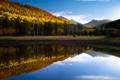 Картинка осень, лес, озеро, отражение, гора