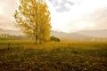 Картинка природа, пейзаж, горы, поле, осень