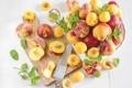 Картинка персики, нектарины, Абрикосы