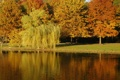 Картинка осень, вода, деревья, озеро, парк, листва, рябь