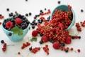 Картинка малина, ягоды, смородина
