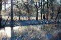 Картинка зима, трава, снег, деревья, река, забор, солнечно