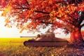 Картинка осень, листья, дерево, Англия, танк, Великобритания, wot