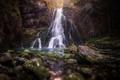 Картинка осень, лес, деревья, природа, водопад