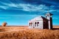 Картинка поле, осень, небо, трава, облака, дерево, листва