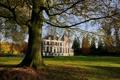Картинка парк, дерево, здание