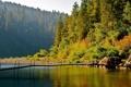 Картинка США, камни, Калифорния, лес, осень, Redwood National Park, озеро