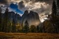 Картинка осень, лес, небо, облака, горы, Калифорния, США