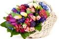 Картинка листья, цветы, корзина, букет, тюльпаны, бутоны