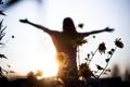 Картинка свобода, девушка, свет, цветы, настроение
