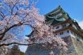 Картинка дом, дерево, Япония, Nagoya City