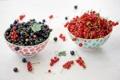 Картинка ягоды, тарелки, черная, красная, смородина, Julia Khusainova