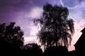 Картинка небо, деревья, пейзаж, ночь, дом, фон, дерево