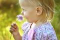 Картинка цветок, лето, настроение, ребенок, девочка