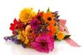 Картинка фото, Цветы, Букет, Герберы, Циннии
