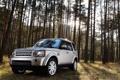 Картинка Discovery, Автомобиль, 2010, Лес, Land Rover, Дискавери, Машина