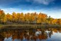 Картинка облака, пруд, деревья, небо, осень, озеро