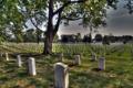 Картинка память, кладбище, Arlington National Cimetery