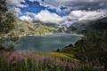 Картинка облака, горы, озеро, цветы