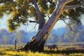 Картинка ветки, природа, дерево, животное, забор, арт, кенгуру