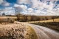Картинка дорога, поле, осень, забор