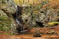 Картинка лес, деревья, парк, ручей, камни, водопад, мох