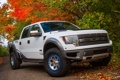 Картинка Ford, форд, большой, пикап, автомобиль, F-150, Roush