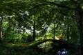 Картинка зелень, вода, деревья, мост, отражение, лавочка
