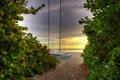 Картинка пейзаж, берег, дорога к морю