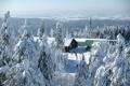 Картинка зима, снег, деревья, пейзаж, природа, фото, ель