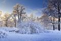 Картинка Зима, холод, мост, деревья