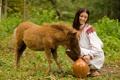 Картинка девушка, кувшин, ослик