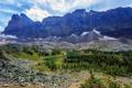 Картинка деревья, горы, озеро, камни, скалы, Канада, Yoho National Park