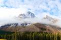 Картинка лес, небо, пейзаж, горы