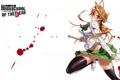 Картинка highschool of the dead, hotd, miyamoto rei