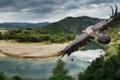Картинка природа, птица, крылья, панорама, полёт, гриф