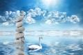 Картинка небо, вода, облака, камни, лебедь