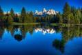 Картинка лес, отражение, небо, гора