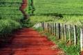Картинка дорога, поле, лето, забор