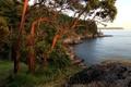 Картинка деревья, река, камни, побережье, Канада, Ванкувер