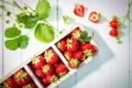 Картинка клубника, fresh berries, strawberry, ягоды
