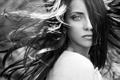 Картинка взгляд, девушка, фото, ветер, волосы, черно-белое, брюнека