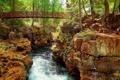 Картинка лес, деревья, мост, скала, река, камни, поток