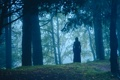 Картинка лес, девушка, туман, в чёрном, силут