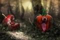 Картинка лес, яблоко, хищники, помидор, дремучий